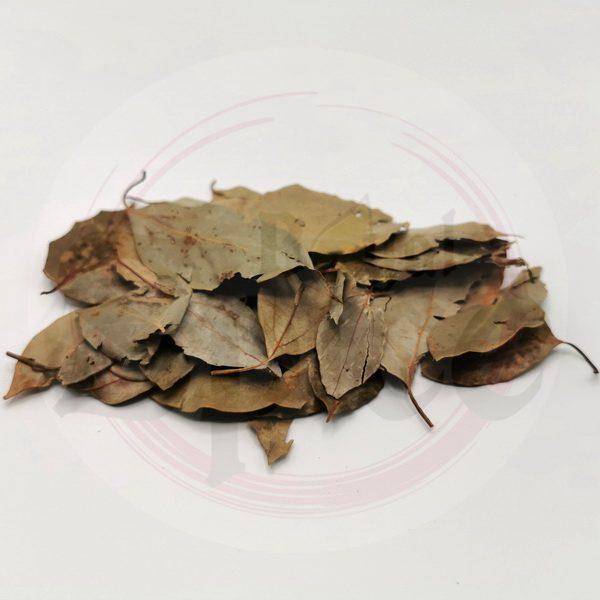 ใบกระวาน-Bay-Leaf